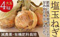 [5/31受付終了]肥料にこだわった「塩玉ねぎ」大玉約4kg(新玉ねぎ)長崎県産