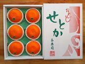 【先行受付・限定5箱】『柑橘の大トロ』ハウスせとか厳選大玉6玉入