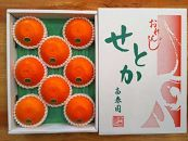 【先行受付・限定25箱】『柑橘の大トロ』ハウスせとか厳選8玉入