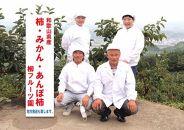 柳フルーツ園 紀州手作りあんぽ柿 フルーツギフト