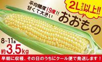 【2Lサイズ以上】贅沢なとうもろこし「おおもの」約3.5kg長崎県産スイートコーン【クール便配送】