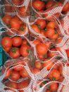 プレミアム「島のトマト」(3㎏)