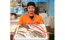 おまかせ鮮魚セット(約4kg)