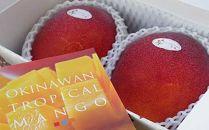 【平成30年最優秀沖縄県知事賞受賞】サンフルーツ糸満のマンゴー約1kg
