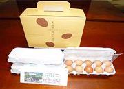 【美馬市】木屋平高原たまご1箱(10個入り×3パック)