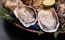 ★数量限定★<周防大島産>特大!天然!殻付き岩牡蠣10個