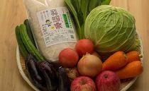 天然海藻肥料栽培コシヒカリ3㎏&農家直送野菜セット