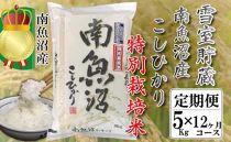 【頒布会 5kg×全12回】雪室貯蔵・南魚沼産コシヒカリ特別栽培