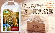特別栽培米「極上南魚沼産コシヒカリ」(有機肥料、8割減農薬栽培)精米5kg