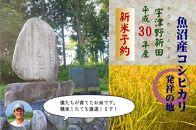 【新米予約】魚沼産コシヒカリ発祥の地米5㎏
