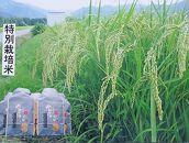30年産南魚沼産こしひかり玄米30kg(無化学肥料、8割減農薬栽培)