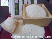 あわら市産コシヒカリ特別栽培米 (1kgk×4)