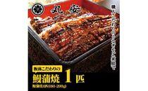 【ポイント交換専用】板前こだわりの国産鰻蒲焼一匹