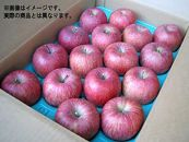 りんご「サンフジ」10kg(特秀28~36玉)