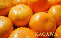みかん王国から直送!香川産の完熟みかん10kg