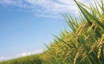 【12ヶ月頒布会】白河浪慢有機栽培米ひとめぼれ<農薬:栽培期間中不使用>5kg(2.5kg×2袋)×12回