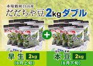 AT33鶴岡白山産だだちゃ豆(早生・本豆)2kgダブル