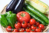 ★やくの高原市特選★ 旬野菜セット