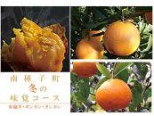 南種子冬の味覚(定期お届け便:3回頒布)