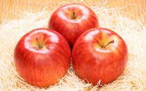 [2019年9月中下旬~発送予定]農園主厳選「シナノドルチェ」 信濃大町・峯村農園のりんご
