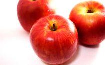 [2019年10月上中旬発送予定]農園主厳選「シナノスイート」 信濃大町・峯村農園のりんご