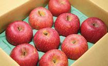 [2019年11月下旬~発送予定]農園主厳選「サンふじ」 信濃大町・峯村農園のりんご