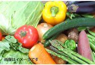 【定期便】★やくの高原市特選★旬野菜セット