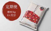 【定期便/全6回】十日町産魚沼コシヒカリ 米屋五郎兵衛 精米5kg