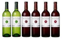 雪室貯蔵ワイン6本セット
