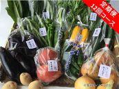【定期便】旬の京野菜 特選 毎月お届けAコース (全12回)