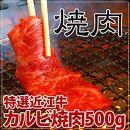 厳選 近江牛 カルビ 焼肉 500g【BS02SM-C】