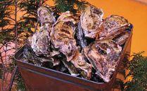 【数量限定500】殻付き牡蠣5kg 約50個