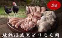 【味付けはシンプルに】地鶏丹波黒どりモモ肉 冷凍