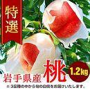 ふじむら農園の特撰白桃 1.2kg