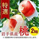 ふじむら農園の特撰白桃 2.0kg