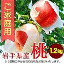 ふじむら農園のご家庭用白桃 1.2kg