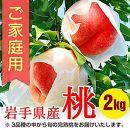 ふじむら農園のご家庭用白桃 2.0kg