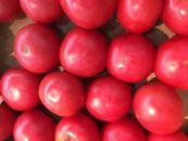 和歌山県産桃太郎トマト約4kg(20~30玉)
