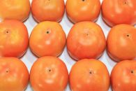 ※11月より順次発送※和歌山県産富有柿約7.5kg(30~40玉)