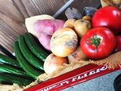 <12月までの期限限定>季節の野菜詰めあわせ