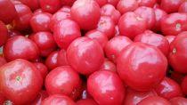 【数量限定】さくらんぼトマト250g×4P