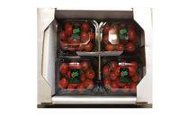 【数量限定100】京丹後産 ミニトマトセット