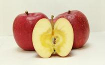 【季節限定・数量限定】いわて純情りんご純蜜倶楽部5kg(サンふじ)