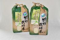 【令和元年産新米】特別栽培米コシヒカリ5kg×2(無洗米)