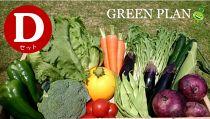 【3ヶ月間お届け】旬の野菜12種+果物など詰合せDセット