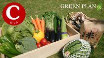 旬の野菜12種+果物・お米など詰合せCセット