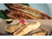 ◆炭火焼 国内加工うなぎ塩麹焼とうみの幸 発酵セット