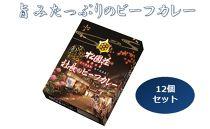 《12個セット》湯の花温泉松園荘保津川亭【社長のビーフカレー】