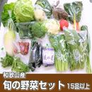 【和歌山産】旬の新鮮野菜セットたっぷり15種以上