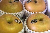 <お届は9月から>【河内長野産】中谷農園の梨 約2.5kg(完熟収穫・大玉)(A)